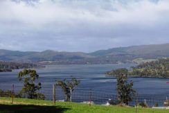 124 Palmers Road, Port Huon 1/4 Acres 1